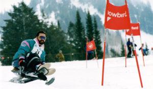 Sit Skier Race v3